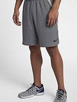 Short Nike 4.0 Dry Cinza