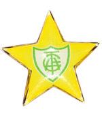 Bottom Estrela Resinado Am�rica Mineiro