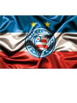 Imã Bahia Escudo Bandeira