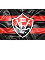 Imã Vitória Escudo Bandeira