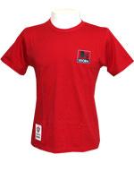 Camisa Vitória Leão Imperial